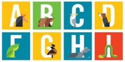 Cảm hứng Typography: Dự án Animal Alphabet