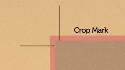 cropmark