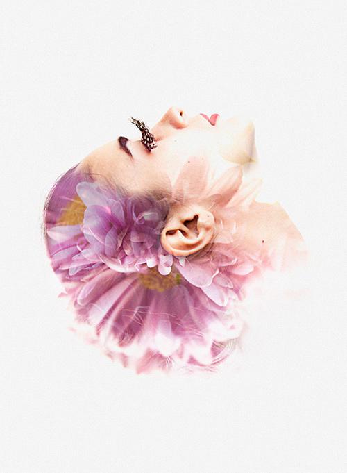 rgb_vn_photo_22-lady-purple-flower