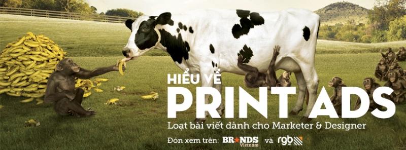 RGB_vn_hieu ve print ad phan 2