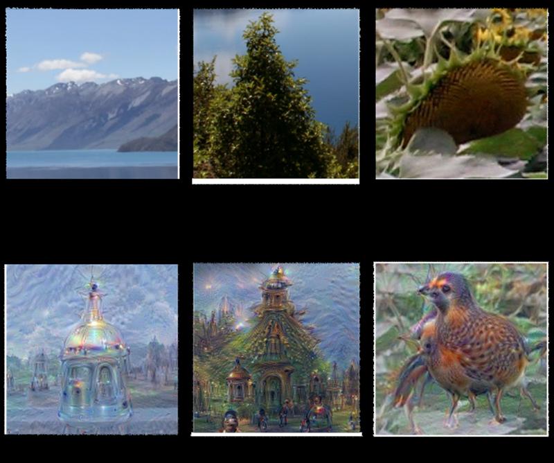 Người ta phát hiện rằng ANN thường nghĩ cây cối là nhà cửa, lá cây là chim chóc, côn trùng
