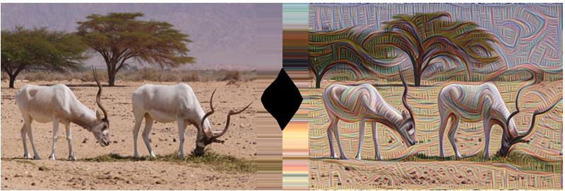 Bức ảnh bên trái chụp bởi nhiếp ảnh gia Zachi Evenor và bên phải là phiên bản mà AI hiểu được ghép từ rất nhiều mảnh ghép nhỏ lại với nhau