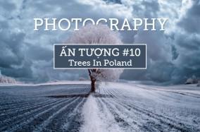 Photography ấn tượng 10