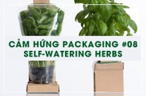 Cảm hứng Packaging #08: Self-Watering Herbs