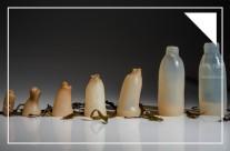 Chai nước tự phân hủy được làm từ tảo