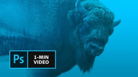 Adobe ra mắt chuỗi video ngắn hướng dẫn dùng Photoshop