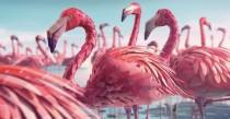 TVC Animation đầy màu sắc do 24 nghệ sĩ thực hiện trong 5600 giờ