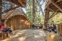 Nhà cây, không gian nghỉ ngơi và tìm ý tưởng sáng tạo do Microsoft xây dựng để phục vụ nhân viên của mình