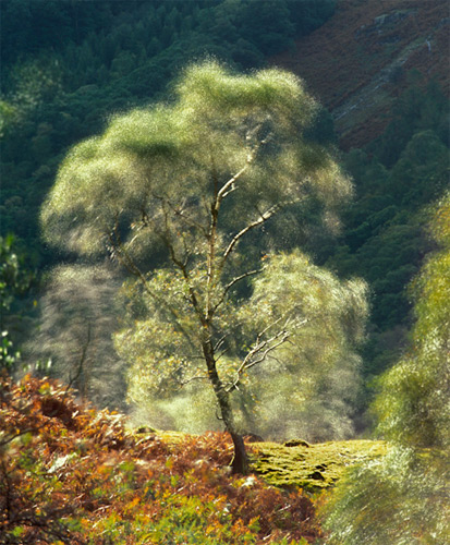 RGB.vn | Chụp rung động trong ảnh phong cảnh