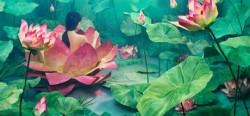 Lee Jee Young và sự sáng tạo vô hạn trong một không gian nhỏ