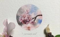 'Postcards for Ants' – Dự án tranh vẽ mini đầy cảm hứng của Lorraine Loots