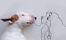 Rafael Mantesso và những hình vẽ vui nhộn cùng chú chó Jimmy Choo