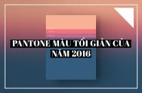 Pantone màu tối giản của năm 2016