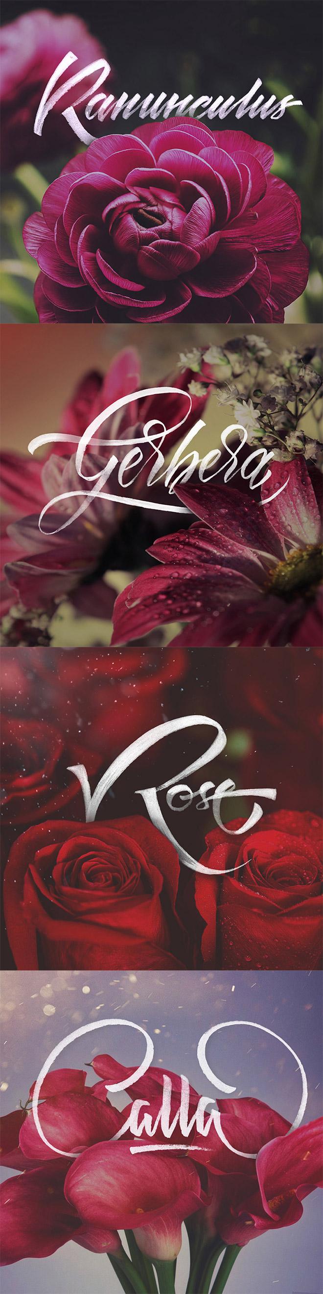 rgb_40-thiet-ke-floral-typography_07