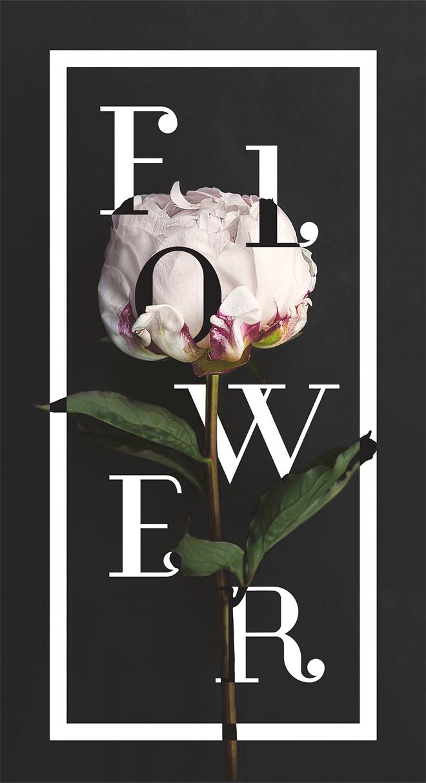 rgb_40-thiet-ke-floral-typography_19