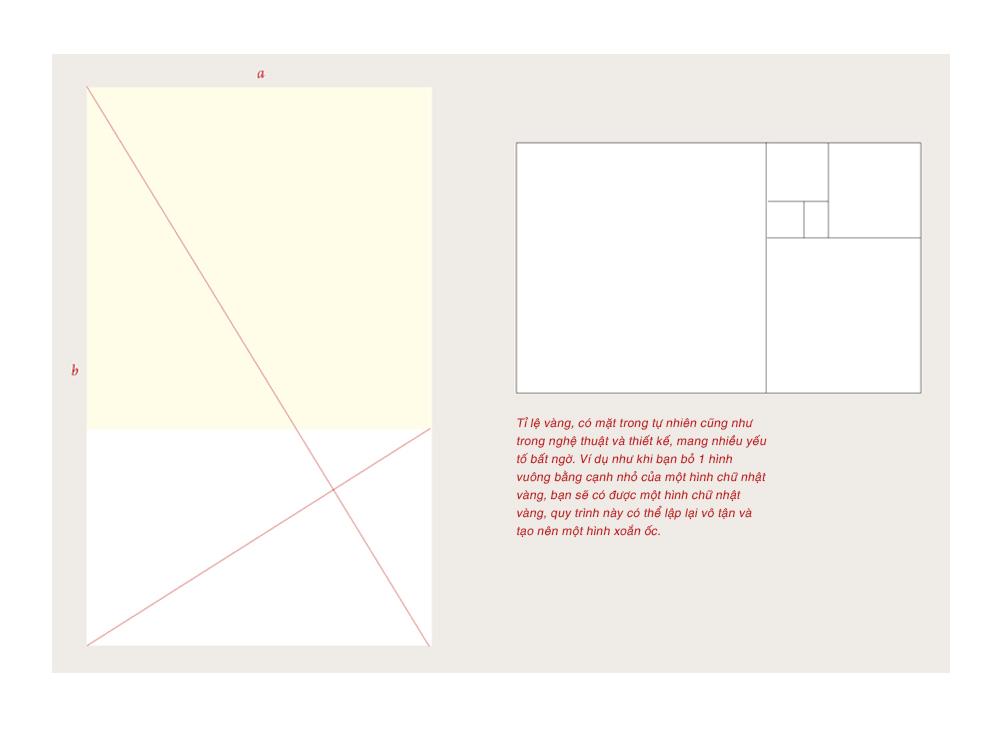 RGB_EX-Grid_01