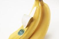 Shiawase Banana – Packaging của những quả chuối hạnh phúc