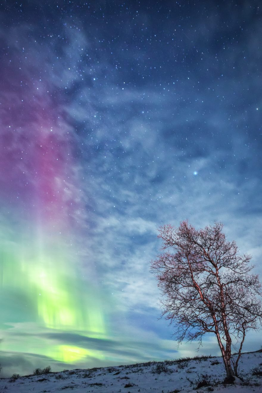 RGB.vn_Lapland_12