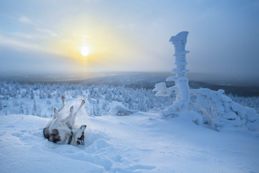 RGB.vn_Lapland_18