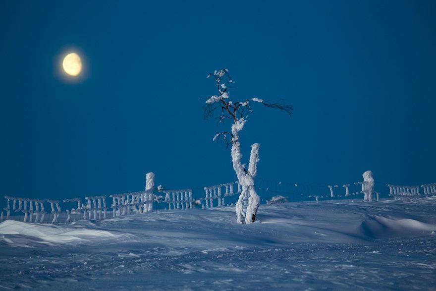 RGB.vn_Lapland_22