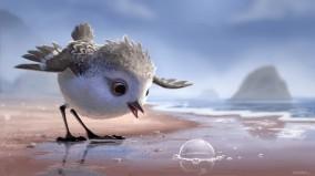 """""""Piper trên bờ biển"""", và những chuyện chưa kể"""
