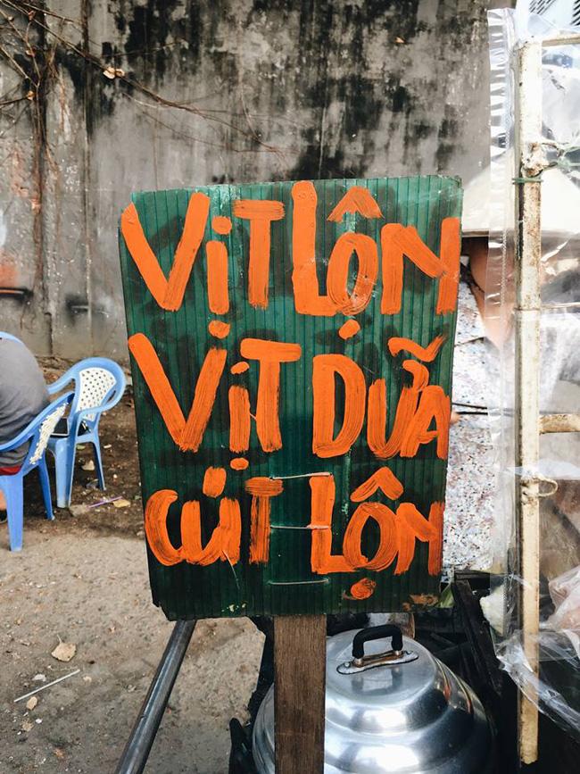 rgb_vn_creative_design_vit_lon_vit_dua_01