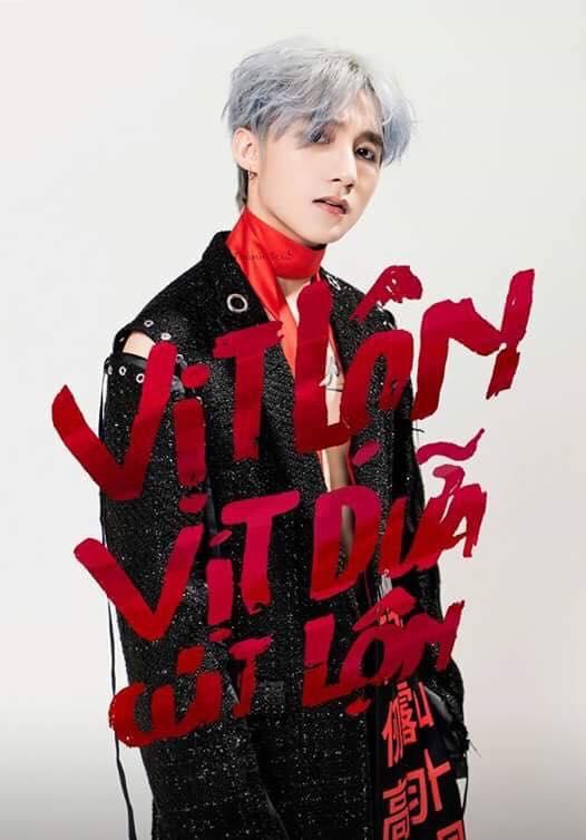rgb_vn_creative_design_vit_lon_vit_dua_010