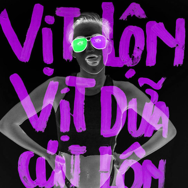 rgb_vn_creative_design_vit_lon_vit_dua_05