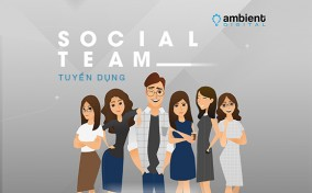 Tuyển dụng Designer, Account, Content Writer từ Ambient Digital Group