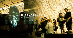 Triển lãm Nghệ thuật Metamorphosis – Hình biến sự chuyển hóa rực rỡ trong không gian Kén at Lim Tower